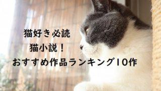 猫好き必読の猫小説! おすすめ作品ランキング10作