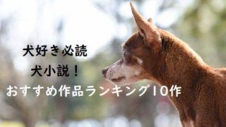 犬好き必読の犬小説! おすすめ作品ランキング10作
